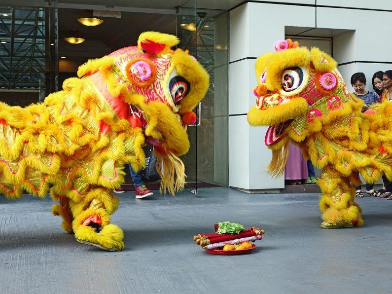 duo de lions danseurs