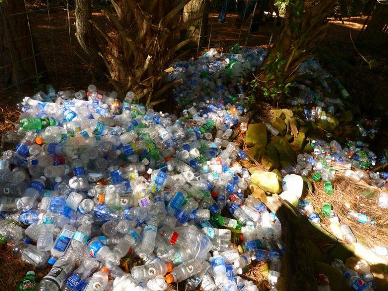 Multitude de bouteilles