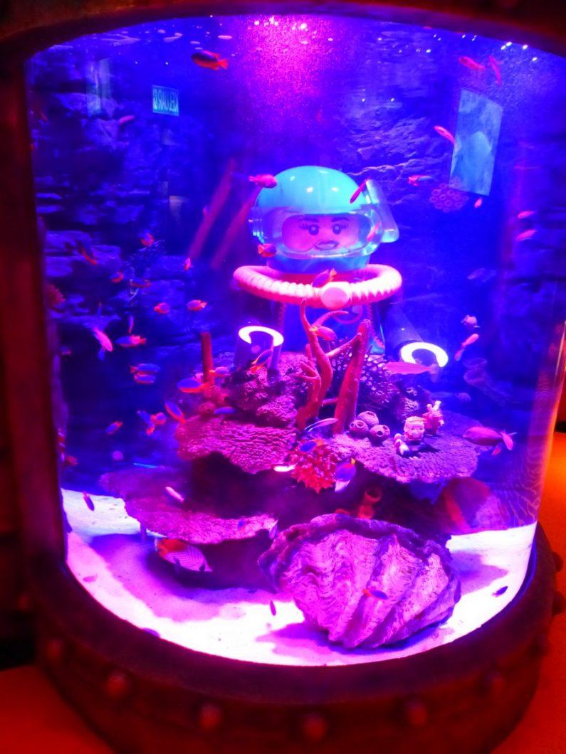 Aquarium à côté de Legoland