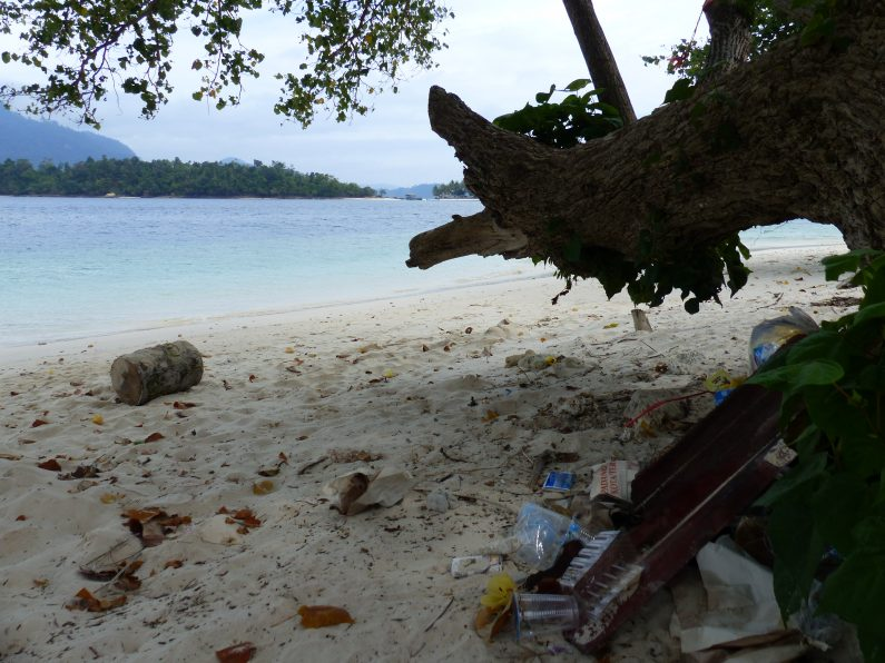 Déchets sur une plage paradisiaque